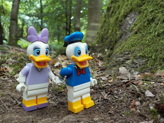 Love in the woods (Ducks) (Lego Custom Zone) Tags: lego minifigure toy forest tree donald daisy duck goose love dating date minifigs toys disney wood