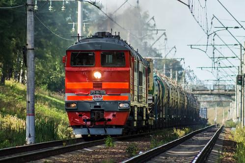 2ТЭ116К-1029, Ораниенбаум - Новый Петергоф ©  neu_zwei
