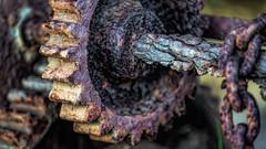 Macro Monday - Tooth decay (Chas56) Tags: decay rust cog teeth closeup canon canon5dmkiii macromondays