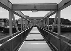 pontoon (chrisinplymouth) Tags: pontoon bridge walkway mountbatten ferry landing black white perspective sea water grayscale cw69x xg 2017 vanishingpoint