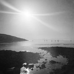 Loch Scresort (Mark Rowell) Tags: isleofrum lochsresort highlands smallisles scotland diana bw blackandwhite 6x6 120 mediumformat ilford delta expired lofi film