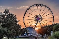 Sunset through the Wheel (_John Hikins) Tags: big wheel view torbay torquay harbour seaside seafront sun sunshine sunset summer nikon nikkor night devon d500 trees tree 1835 1835mm 18 sigma sea pavilion