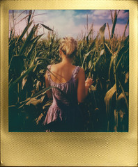 Fields of Gold (Irrational Photography) Tags: polaroid theimpossibleproject impossible project original originals polaroidoriginals retro vintage antique hipster old analogue analog film square photo picture onestep spectra image sun 600 640 autofocus montreal quebec canada self developing instant border girl woman asian beautiful beauty sexy hot adorable black blonde hair face cloth sock socks stockings stocking dress light eyes vietnamese vietnam skin glasses cute