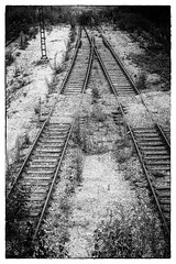 take the A train (stevefge) Tags: 2018 deutschland duitsland germany munchen trains lines traintracks tracks a blackandwhite bw monochrome zw zwartwit reflectyourworld abandoned disused