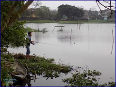 Vietnam, Hue City Fishing 20180212_153257 DSCN3131 (CanadaGood) Tags: asia asean seasia vietnam vietnamese hue fishing boat tree lake people person canadagood 2018 thisdecade color colour