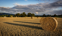 Cliche (cliveg004) Tags: strawbale straw bale round harvest croome worcestershire shadows clouds sky bredonhill