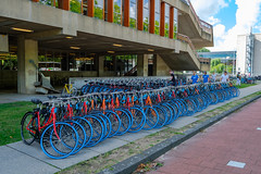 Blue Tires (FotoCorn) Tags: tudelft blue netherlands universityoftechnology technology bluetires campus delft students university europe tu swapfiets bicycle multicolor