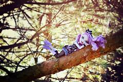 Not all who Wander are Lost (GothGeekBasterd) Tags: kitty cheshire doll mattel everafterhigh rebel rebellious basic catrine demew monsterhigh newscaremester tree walk outdoors outside alice wonderland lewis carroll