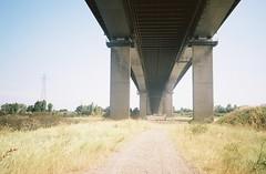 Under the M5, on the Pill side (knautia) Tags: m5 motorway pill northsomerset england uk august 2018 underthebridge underthem5 bridge film ishootfilm olympus xa2 olympusxa2 nxa2roll53 heatwave electricitypylon 160iso kodak portra