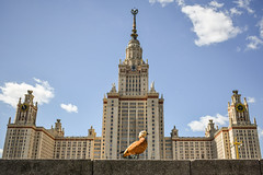 proud moscow duck (karwinho) Tags: moscow russia university moscowstateuniversity duck bird sky clouds city architecture building soviet concrete animal lomonosov tower proud urban urbannature