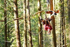 You Have the Platform Already… Now Use it to Increase Thrills and Drive More Revenue http://bit.ly/2yEhhcu (Skywalker Adventure Builders) Tags: high ropes course zipline zipwire construction design klimpark klimbos hochseilgarten waldseilpark skywalker