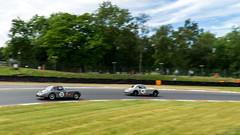 DSC07208ps (motorsportaction) Tags: amoc astonmartin brandshatch tvr jaguar mg bmw lotus porsche triumph holden sprite
