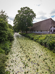 Denmark - Kvaerndrup - Egeskov Castle - Jardines (Marcial Bernabeu) Tags: marcial bernabeu bernabéu denmark danmark dinamarca danish danes danés danesa scandinavia escandinavia kvaerndrup egeskov castle castillo gardens jardines green verde