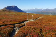 2015 / Day 11 / On Kungsleden to Saltoluokta (Northern Adventures) Tags: sarek sareknationalpark sweden sverige lapland lappland lappi sápmi sapmi north deep deepnorth nationalpark autumn fall september hike hiking walk walking trek trekking track tracking backpacking wandering trip journey exploration outdoors adventure nature scenic scenery daylight light tundra berries mountains kungsleden trail path footpath