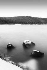 Lac du boucher (marion4363) Tags: lac lacduboucher boucher neige hiver snow winter lake tree trees forêt auvergne hauteloire