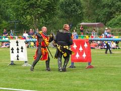 DSCF3803 (SierPinskiA) Tags: ruffordabbeycountrypark rufford knightsofnottingham fujixs1 jousting medieval horse knights goldeneagle falcon
