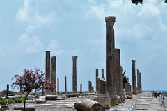 IMG_0486 (Nai.Sass) Tags: lebanon trave tyre sour anjar baalback ruins roman byzantine middle east temples summer vacation sea amateur