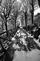 winter path (ianjc.hamish) Tags: walks winter snow north yorks