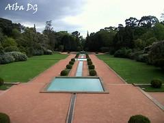 Jardín con Agua en Jardín de Serralves, Oporto (Portugal) (albadgr) Tags: oporto porto portugal serralves jardín garden agua water naturaleza nature