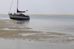 _MG_7035 (tombild) Tags: nordsee2018 segeln tomsblognordsee2018 spiekeroog