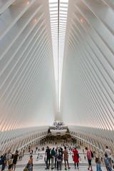 _F8C1771 (saebaryo) Tags: canoneos5dmarkiii canon 5d3 5diii canon1635mmf28lii 1635mm oculus worldtradecenter wtc