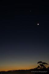 Moon and Venus Setting (coxydave) Tags: moon night venus