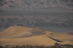 Mosquito dunes, death valley (a.chiezzi) Tags: deathvalley deserto desert california dunes dune
