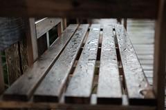 Bench after the rain #vacation #rain #bankbench #drops #raindrops #zingst #balticsea #ostsee #fujifilm #fujifilm_xseries (gunnarmueller76) Tags: park bench bank vacation afterrain drops