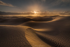 Desert Winds (hillsee) Tags: desert sand dunes wind light glow ripples texture sunburst mesquite death valley nature landscape nikon d850