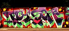 graffiti in Eindhoven (wojofoto) Tags: eindhoven nederland netherland holland berenkuil stepinthearena wojofoto wolfgangjosten graffiti streetart poison
