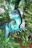 IMG_0219 (jmac33208) Tags: mystic aquarium connecticut fish