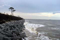 Beach Jekyll Island (ToJoLa) Tags: 2018 canon jekyllisland summer zomer vakantie strand beach nature natuur ijland georgia schip horizon boom landschap boot ship kust coast hightide vloed hoogtij getijde