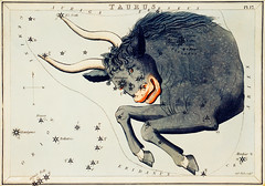 Sidney Hall's (?-1831) astronomical chart illustration of the Taurus. Original from Library of Congress. Digitally enhanced by rawpixel. (Free Public Domain Illustrations by rawpixel) Tags: aerostatique animals antique april art arts astrological astrology astronomical astronomy bull celestial chart cluster clusters compass constellations drawing etchings hall handcolored illustrated illustration locimage magical map may mythical mythological name old open paints pleiades sidney sidneyhall sketch star stars taurus vintage zodiac