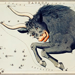 Sidney Hall's (?-1831) astronomical chart illustration of the Taurus. Original from Library of Congress. Digitally enhanced by rawpixel. thumbnail