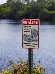 Be Alert! (cizauskas) Tags: staugustine florida pond lake warning sign alligator snake
