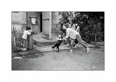 Rustavi - Georgia (Punkrocker*) Tags: leica m7 summicron asph 35mm 352 film kodak trix 400 nb bwfp city people rustavi georgie georgia travel street