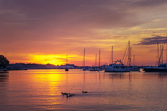 Annapolis Sunrise (johngoucher) Tags: approved sunrise annapolis downtownannapolis outdoors maryland summer sky water orange yellow gold ducks sun nature annapolisyachtbasin waterfront sonyalpha sonyimages morning dawn birds boats sailboats masts annearundelcounty sunshine clouds