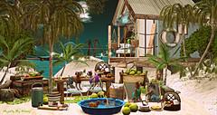 Majesty- Where The Wind Blows (Ebony (Owner Of Majesty)) Tags: chezmoifurniture chezmoi jian trèschic ultraevent epiphany majesty majestysl majesty2018 majestyexteriors summer summertime beachliving beach puppies dogs pets virtualanimals homedecor homeandgarden homes homesweethome home decor decorating virtual virtualliving virtualservices virtualspaces videogames secondlife sl headhunters taikou con ddd omen {whatnext} skye studioskye littlebranch mishmish dustbunny commoner cuberepublic floorplan