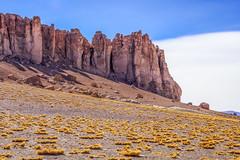 Salar de Tara, Atacama Chile (www.alexandremalta.com) Tags: landscape alexandremalta desert chile atacama sanpedrodeatacama salar tara salardetara