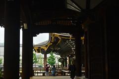 DSC_0007 (sxcxxhx) Tags: japan osaka kyoto hydrangea flower trip voyage 日本 大阪 京都 旅行