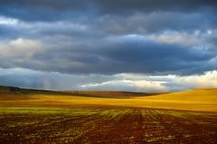 Estratos (una cierta mirada) Tags: landscape sky land clouds cloudscape nature outdoors colors canon eos 6d ef100mm usm