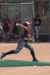 (shinnygogo) Tags: baseball carson summer 2018 torrance youth tll