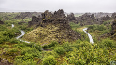 Dimmuborgir, Iceland (Sascha Selli) Tags: leica leicam10 trielmar283550mmf4e55 island iceland europe dimmuborgir