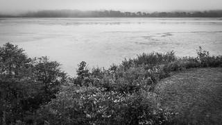 tidal flats, fog, Saint George River, Thomaston, Maine, Panasonic Lumix FZ200, 8.14.18