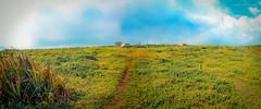 Landscape (Isai Hernandez) Tags: landscape paisaje sky skyblue road green beauty beautiful photography
