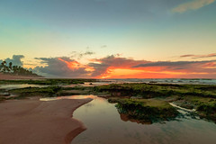 Winter Sun rise (ladgon) Tags: praia bahia praiadeipitanga goldenhour solnascente