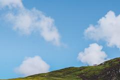 Diamond Hill Loop (nachomaans) Tags: atlantic eire nature park trek track path loop diamond green blue clouds sky mountain galway connemara fuji ireland summer xt20 ie