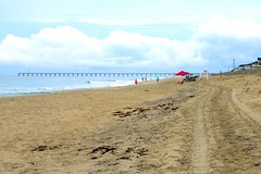Beach at Outer Banks, North Carolina. (Karen Molenaar Terrell) Tags: outerbanks northcarolina beach atlanticocean waves sand dunes duck
