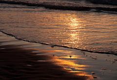 Morar Landscape 82 (chris-parker) Tags: scotland morar arisaig camasdarach camusdarach beach clouds sea sky lichen waves rum rhum blaven eigg sgurr