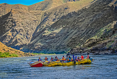 Floating The Hells Canyon (http://fineartamerica.com/profiles/robert-bales.ht) Tags: aupload fb forupload haybales hellscanyontrip hillcanyon idaho people photo places projects states nature canyon floating recreation river wilderness area remote mountain america usa wild white hell oregon green range vacation scene outdoors scenic hells hiking tourism water salmon blue snake desert eastern fishing fly outdoor riggins rock rugged nez trout beauty steelhead conservation clouds devils tourist gorge mountains washington snakeriver hellscanyon robertbales boat jetboat rapids mixedmedia rafts